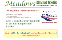 Meadows Driving School screenshot