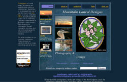 Mountain Laurel Designs Online screenshot
